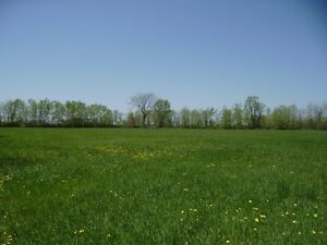 Great 13 acre building lot Renfrew area.