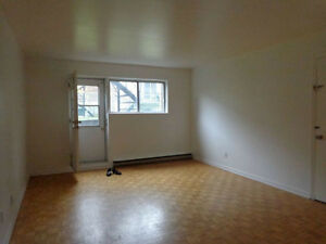 3 1/2 Basement Apartment