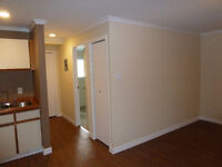 One Bedroom Fully Renovated Condo (Harrison Hot Springs)