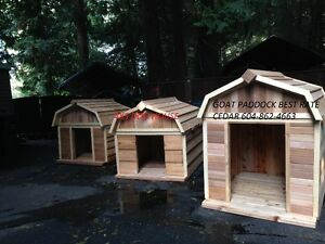Dog houses - New Goat Paddock LG XL XXLG and Goat Barn