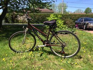 Minelli hybrid bike- vélo hybride minelli