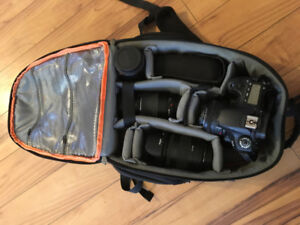 Photography kit - body/4 lens/speedlite/battery grip/bag/tripod