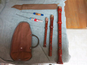 Musical Recorder Set