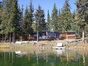 Need to get away from hustle and bustle?check our lakeside cabin