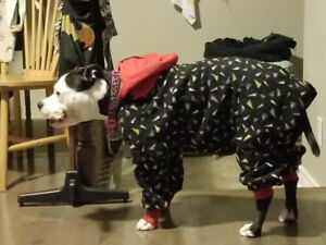 Dog pajamas/sweater