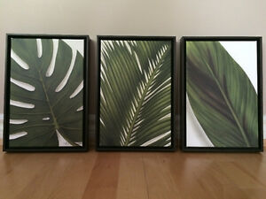 Brad Dinwoodie Limited Edition Framed Canvas Prints (3)