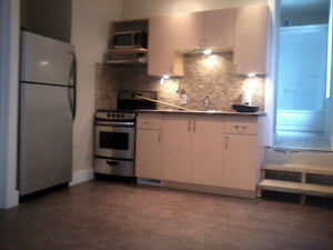PLUMBER /RENOVATOR AVAILABLE!!! 20+ YEARS EXP!!!! London Ontario image 9