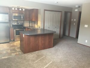 Modern 2 bedroom lower suite ONLY $895 month!