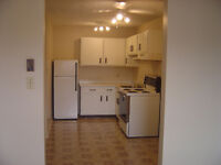 1 Bedroom $590 - First Month Rent 1/2 Price