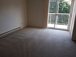 Large Master bedroom for female student/working professional