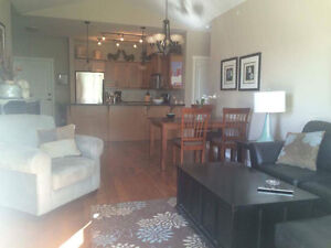 Beautiful furnished mission condo