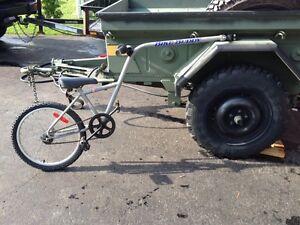 Bike buddy tag along bike velo giraffe
