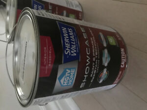 Sherwin Williams Interior paint - icicle