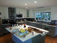 Renovation carpenter with 10+ years experience