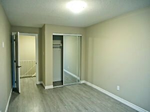 Newly Renovated 2+1 Bedroom Townhouse Kitchener / Waterloo Kitchener Area image 6