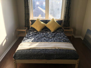Looking for Clean and Quiet student room rental York University