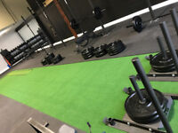 Personal trainer with private fitness studio