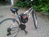 Oryx Bicycle with an engine on it