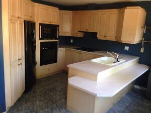 Armoires de cuisine en bois, comptoir et évier