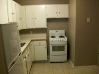 Affordable Renovated & Reduced Damage Deposit