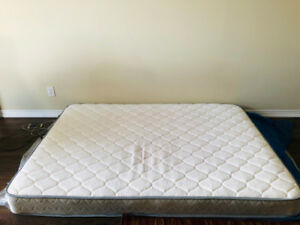 Twin Size Mattress along with two pillow for sale 2.5 months old