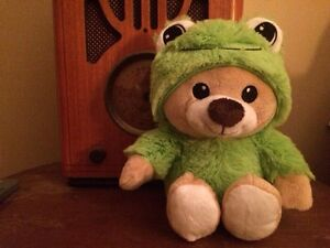 Help Us Find Another Bear!