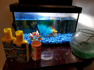 $40 Fish tank with fish filter food bowl water