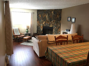 Beautiful 1 bedroom condo in Oliver with parking (Downtown)