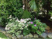 Good 4 Garden Care