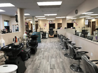 Opening for Hairstyling or Esthetics rental