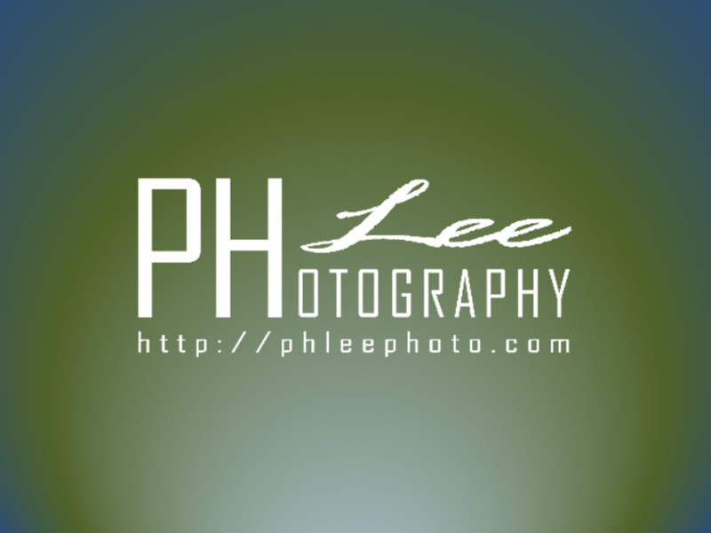 Freelance Photographer in Singapore - Photography for Wedding, ROM, Party, Corporate Events