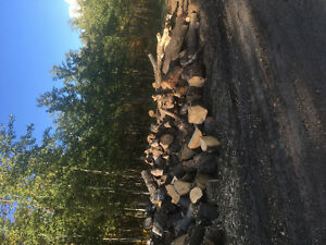 fire wood Strathcona County Edmonton Area image 2