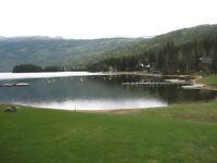 #3 - 4240 East Barriere Lake Road - Shuswap Highlands