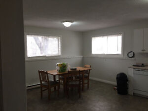 4 bedroom apartment for rent next to campus and bus stop.