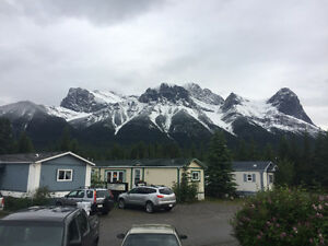 Young outdoorsy, respectful guy looking for a place in Canmore