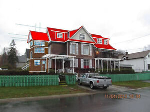 10 Bedroom House for sale; business opportunity