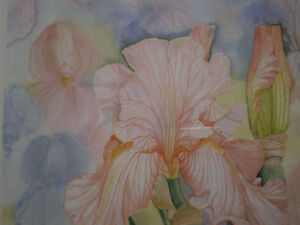 "Mary Dawn Roberts "" Velvet Petals "" Limited Edition Print Kitchener / Waterloo Kitchener Area image 7"