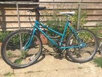 Female Mountain Bike for Sale