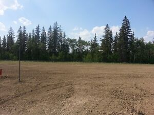 Southwest Ravine Lot In Cameron Heights For Sale