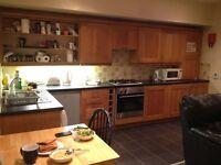 1 bedroom flat Belfast/Lisburn road area.