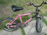 Custom Raliegh girls bike