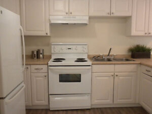 Modern, Newly Renovated 2 Bedroom in Silverwood