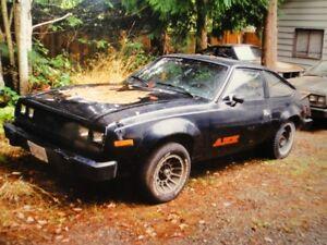 1979 amx
