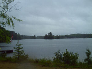 Waterfront Lot Ready for your Retirement Dream Home or Cottage Kawartha Lakes Peterborough Area image 4