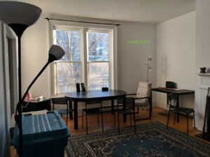 3-Bedroom Apartment Downtown for Sublet/Lease-Takeover in May