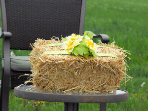 Mini Straw Bales for Special Events or Bedding Small Pets