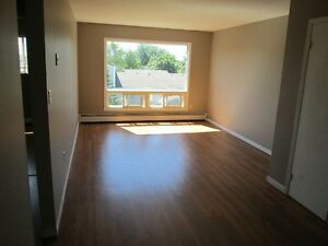Large Bright 2BD  Available immediately  $550.00