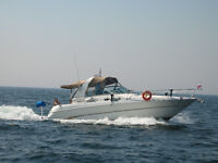 POWER BOAT SEA RAY 310 FOR SALE