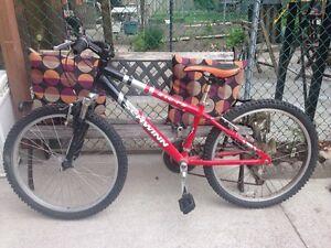 Boys mountain bike schwinn