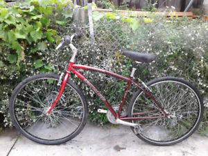 Nice Specialized Crossroad Hybrid Bike + New U-lock for extra $2